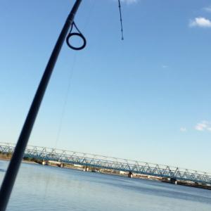 釣りTALK