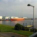 東京湾、釣り、ソーラス条約、アイナメ、シーバス