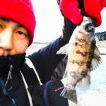 【富津メバル2017】今年初のメバル釣りはヒラメも出て三目達成!