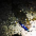 【荒川シーバス2017】二夜連続!バラシたら二度と出ない荒川七不思議。