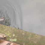 【本気?釣り】ウナギ釣りのはずが・・・●●ポンおじいちゃんに夢中①♪(北区岩淵・志茂)