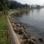 【釣り場】大井ふ頭中央海浜公園(東京都品川区)