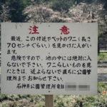 【心霊×釣り】美女がいるよ。超心霊スポット石神井公園で釣りはいかが?