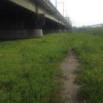 【心霊釣行】精霊のご加護を求めて・・・江北橋にシーバスを釣りに行く♪(江北橋①)
