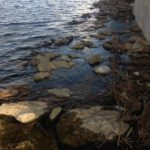 【荒川】釣り人が水死体発見。やっぱりそういうことあるんですね・・・