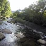 【源流テンカラ2017】台風直前の檜枝岐尺上イワナ釣行(動画)