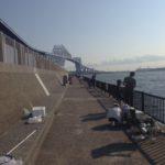 【釣果情報】釣りに行こうよ♪関東の海釣り施設、9/9の釣果まとめ。