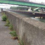 【釣り場(浦安市)】ハゼ釣りスポットの猫実川河口♪三番瀬沿い緑道にも近い!