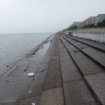 【釣り場(浦安)】日の出三番瀬沿い緑道♪ 釣りも潮干狩りも健康体操も、できちゃう!