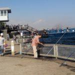 【釣り場】本牧海釣り施設をご紹介♪これからはサバが熱い?