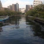 【釣り場(江東区)】門仲近くの大横川!花見と富岡八幡のついでに釣りに行こう♪