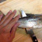 赤水門ニゴイは臭いのか?とりあえず捌いて塩で食ってみた。
