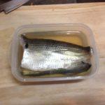 【料理】釣魚コノシロの酢漬け作り♪