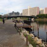 旧中川を歩き通す!旧中川右岸の全釣り場を紹介していきます♪