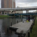 【釣り場】旧中川右岸散策(逆井橋〜亀小橋)
