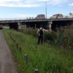 【釣り場】旧中川右岸散策(亀小橋〜中川新橋)