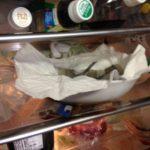 【干物作り】サヨリの文化・冷蔵庫干しに挑戦!干物作りダルそう・・と思っている貴方へ。