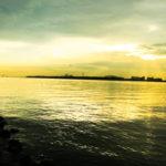 【荒川シーバス2017】もう行くしか無い!葛西海浜公園のデイゲーム!巨大なのが釣れました。。。