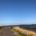 開幕前に釣っときたい!羽田の飛行機を眺めながらのカレイ釣行♪