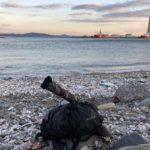浮島、東扇島、久里浜、3日間カレイ釣行の結果をご報告。
