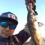 【荒川シーバス2017】葛西臨海公園でウンの良い釣りができました!