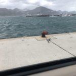日本海で極寒の黄アジ釣り。早く帰ってコタツに入りたいよ・・・