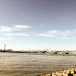 【荒川シーバス2018】葛西海浜公園のデイシーバス!ランカーに備えてロッドのチェックをしっかりしよう!