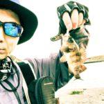 【富津のメバル2018】富津のメバルさん、シーバスが釣れないワタシを助けてください!たった30分のジアイに救われた!