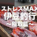 【伊豆の釣り】ストレスMAX伊豆釣行! 踊る阿呆に釣る阿呆 ~稲取篇~