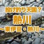 【伊豆の釣り】熱川投げ釣り天国!冬は何が釣れるの?ワニは釣れないよ♪熱川篇