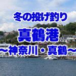 【神奈川の釣り】冬の真鶴港では何が釣れるのか?メゴチ食べたいな♪あれも釣れちゃう?~真鶴篇~