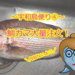 【愛媛県宇和島市⑦】鯛カマ大量注文!CAS凍結でキレイなピンク色が保てちゃう。いつでも新鮮な鯛が食べれるって最高♡