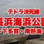 【伊豆の釣り】冬の長浜海浜公園で激しい攻防戦!テトラの向こうに希望はあるのか?長浜海浜公園篇②