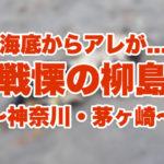 【閲覧注意】【神奈川の釣り】暴風の茅ヶ崎・柳島海岸でほの暗い海の底からアレが…!不思議コレクションもついてるよ♪