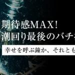 【荒川シーバス2019】期待感MAX!潮回り最後のバチ抜け!編集長の不気味コレクションもあるよ♪