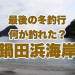 【伊豆の釣り】暴風雨の下田・鍋田浜でこの冬最後の釣り!何が釣れたかな♪