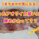 【愛媛県宇和島市】釣ったイカ届いたよ♪イカの締め方動画に、まちおかおったまげ!!!!