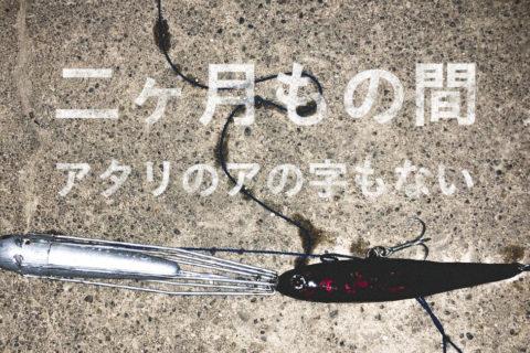 【荒川シーバス2019】辛いです!まったく釣れません!根掛かりしかありません!助けてください!
