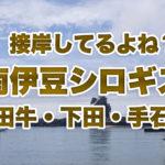 【伊豆の釣り】雨風のGW序盤、南伊豆の3漁港にシロギス釣りに行ってきた!接岸してるでしょ♪あれ…? ~田牛港・下田港・手石港~