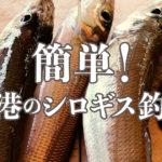 【新潟のシロギス2019】霧に雨!ワークマン超撥水デニムを着て遠投しなくても釣れるシロギスに挑戦♪