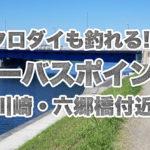 【釣り場紹介】シーバスの他にクロダイも釣れる?川崎 JR&京急高架下~六郷橋・六郷土手付近