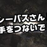 【荒川シーバス2019】シーバスさん!手を繋いで!話を聞いてください!