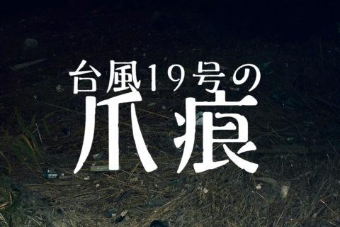 【荒川シーバス2019】台風19号の爪痕残る荒川河川敷!とても釣りができる状態ではないよ!