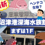 マニアックな魚好きには沼津港深海水族館がおススメ♪ シーラカンスの本物の冷凍個体もあるぞ!でもまずは1Fをご紹介♪
