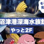 ついに冷凍シーラカンス登場なるか!沼津港深海水族館で歴史のお勉強♪ようやく2Fをご紹介♪