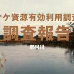 【鮭釣り】那珂川のサケ資源有効利用調査に行って来たよ♪【茨城県】