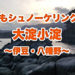 釣りにもシュノーケリングにも!東伊豆・大淀小淀で日が暮れて…結果はいつもの魚磯探訪!相変わらず最高に美味しいですよ♪