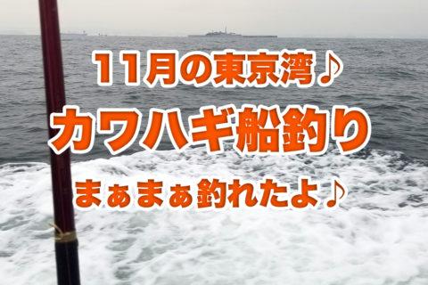 11月の寒空を切り裂いてしまえ!東京湾のカワハギ釣りに行ってきたよ♪五目っぽくいろいろ釣れたけど結局もらったよ♪