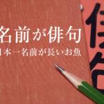 【変な名前のお魚】俳句になっている!日本一長い和名を持つ魚!