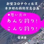 【新型コロナウィルス特別緊急企画】第七回!思い出のあんな釣り!こんな釣り!完全釣り人拒絶になった富津の漁港